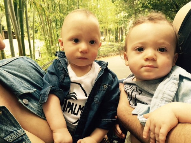 bijan and zach twins with 22q11 2 deletion syndrome or digeorge